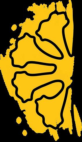 Logo%2520-%2520NuC%2520completa%2520e%2520colorida%2520(2)_edited_edited.png
