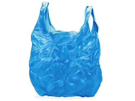 Ban the Bag Ban