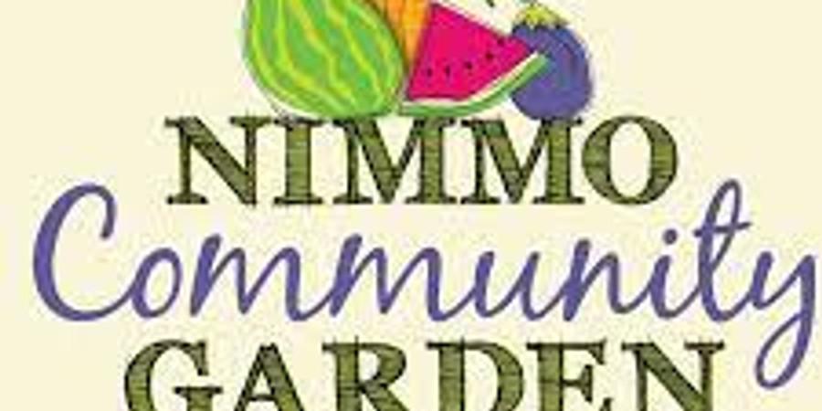 Harvesting at Nimmo Community Garden