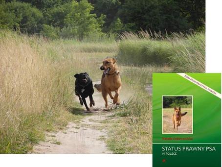 Zielona Góra - pies w miejscach publicznych