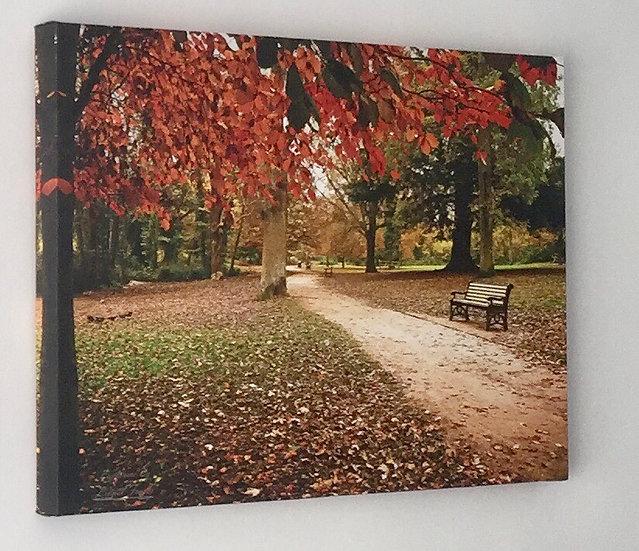 S240A3 Autumn in Hampden Park