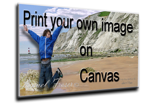Print Your Own Picture on Canvas