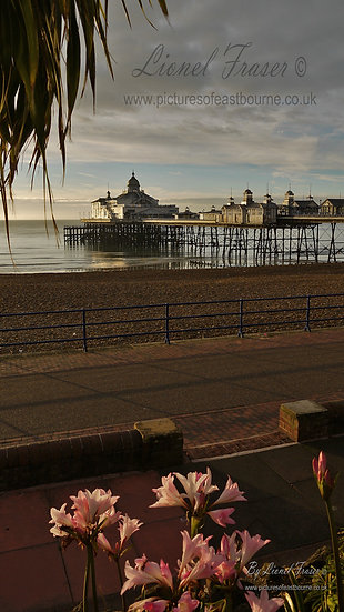 105B3 Eastbourne Pier at Sunrise
