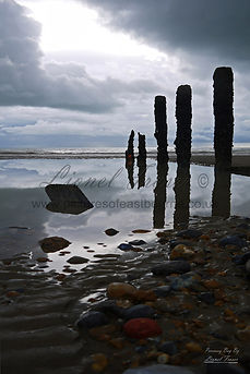 Pevesey Bay Beach Groynes