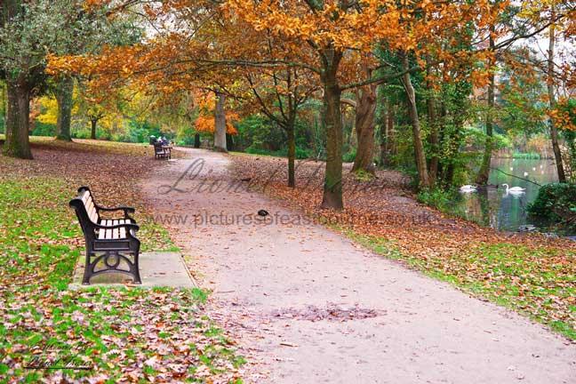240A4 Autumn in Hampden Park