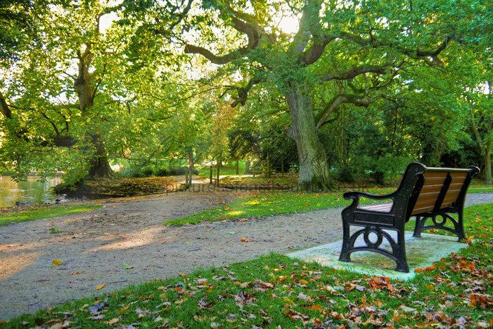 240B1 Autumn in Hampden Park