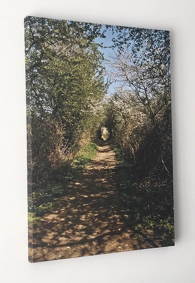 S124 Herstmonceux Castle Ramblers Path