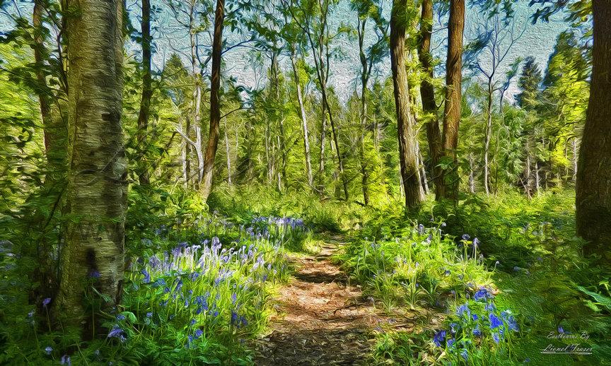215F1 Bluebell Walk Abbots Wood