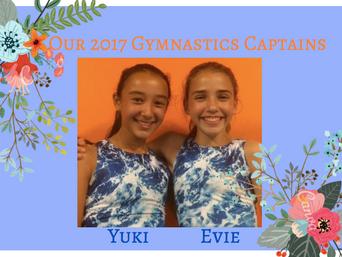 Term 2 Gymnastics Newsletter