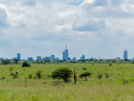 Live and Work in Africa - The Best Countries for Expats