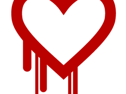 Heartbleed: A Bloody Catastrophe