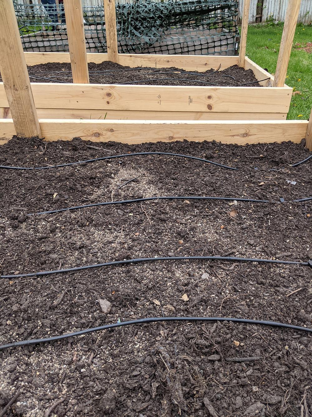 Raised garden bed drip irrigation