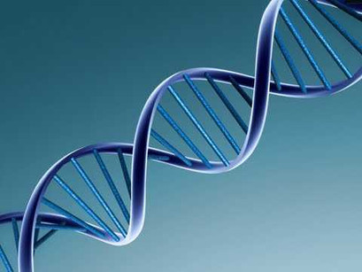 Scientist Discover a New, More Accurate Method for DNA Storage.