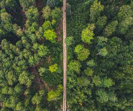 Fotografiranje z dronom