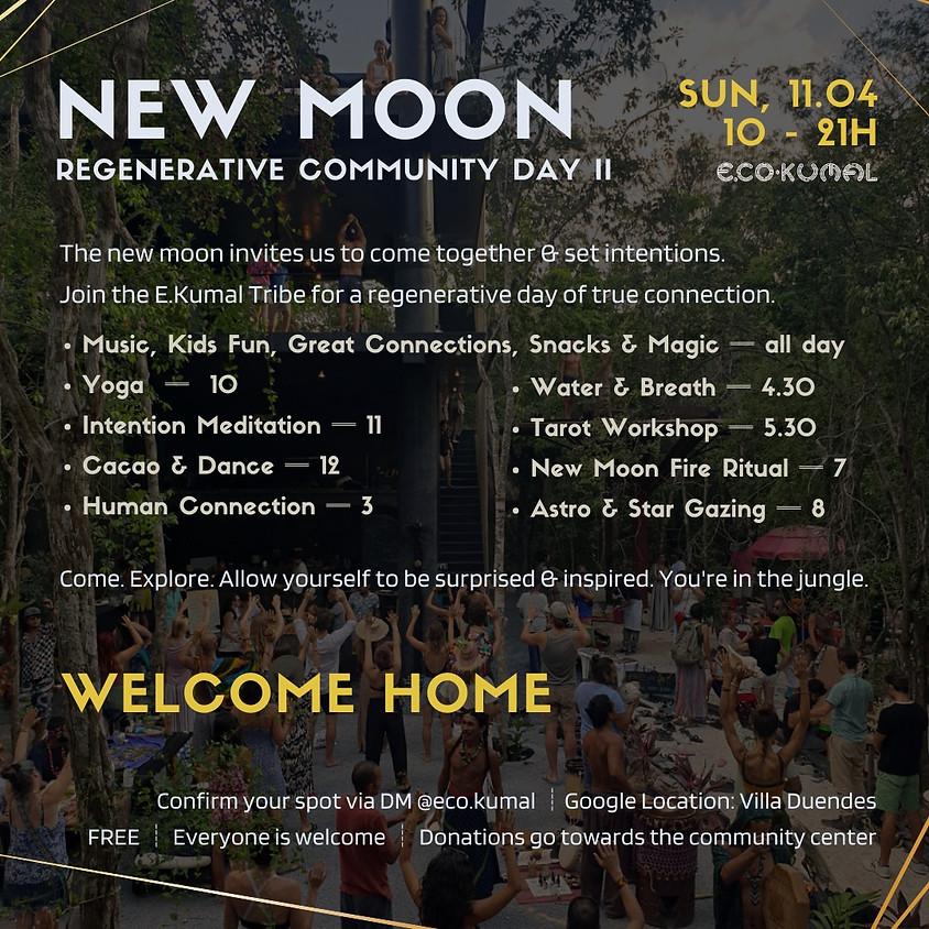 New Moon Regeneration Day II