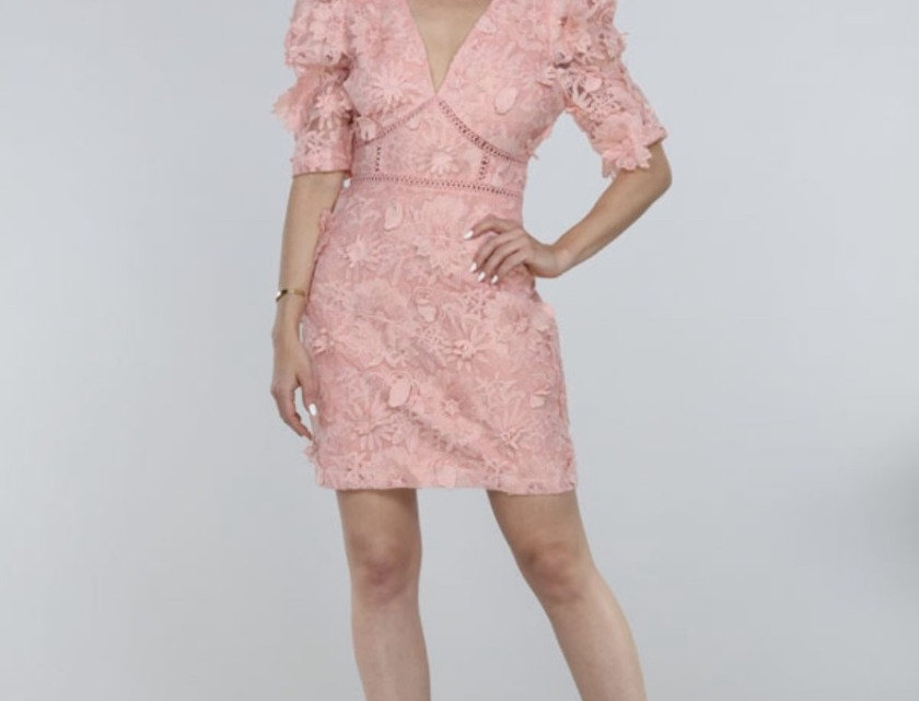 Embroider Dress