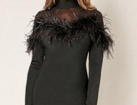 Black Feathers Dress