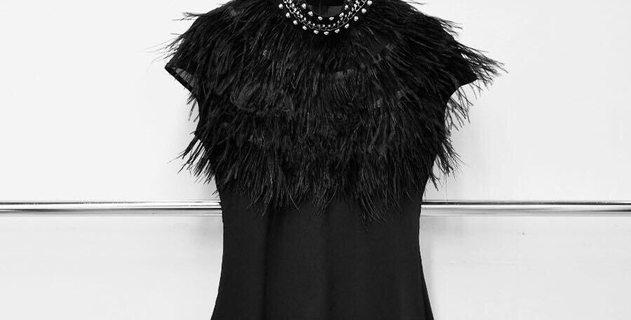 Feathers Top