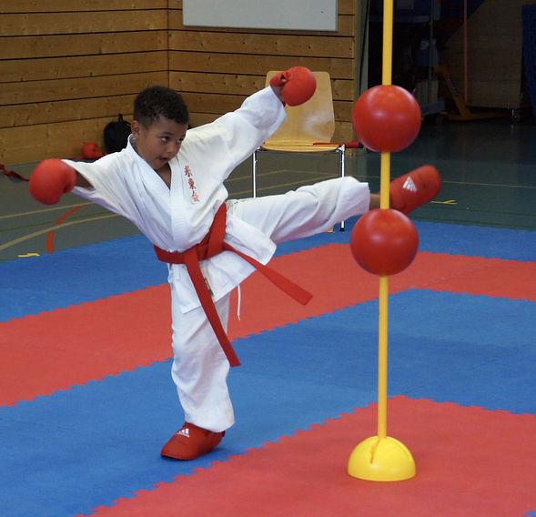 Karate Fällanden: Spass für Jung und Alt.