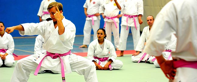 Pinkfarbige Gurte bei KNX-Karate-Seminar.