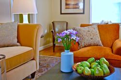 _Living Room Washington, DC_ Version 1_5