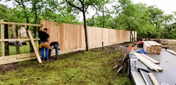 New privacy fence (2019)