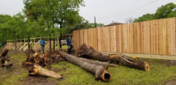 Building privacy fence (2019)