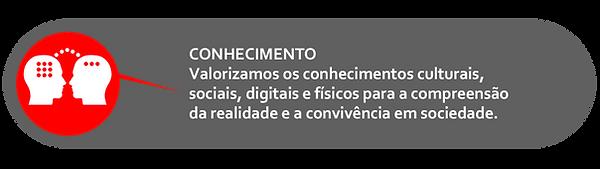 ICONE CONHECIMENTO.png