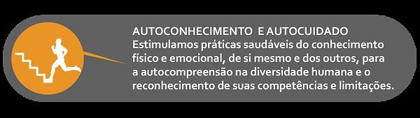 ICONE AUTOCONHECIMINTO.png