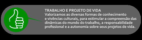 ICONE TRABALHO.png