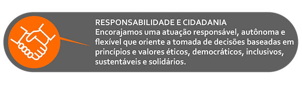 ICONE RESPONSABILIDADE.png