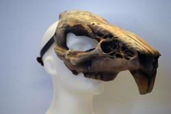 rat fibreglass mask