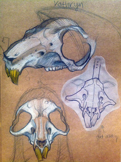 rat design sketch