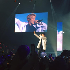 BTS Wings Tour - Such an amazing concert. I still watch my videos that I took.