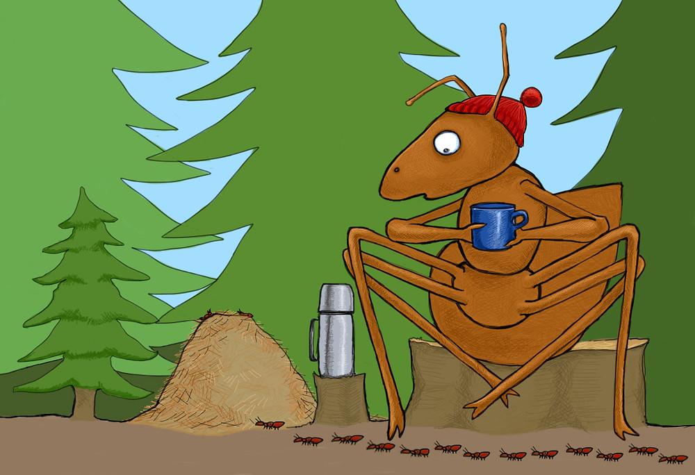 Bilde maur i skogen.jpg