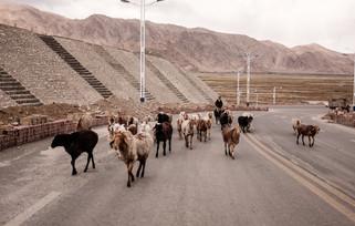 Tashkurgan. Xinjiang Uyghur
