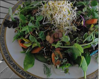 spring salad 18.jpg
