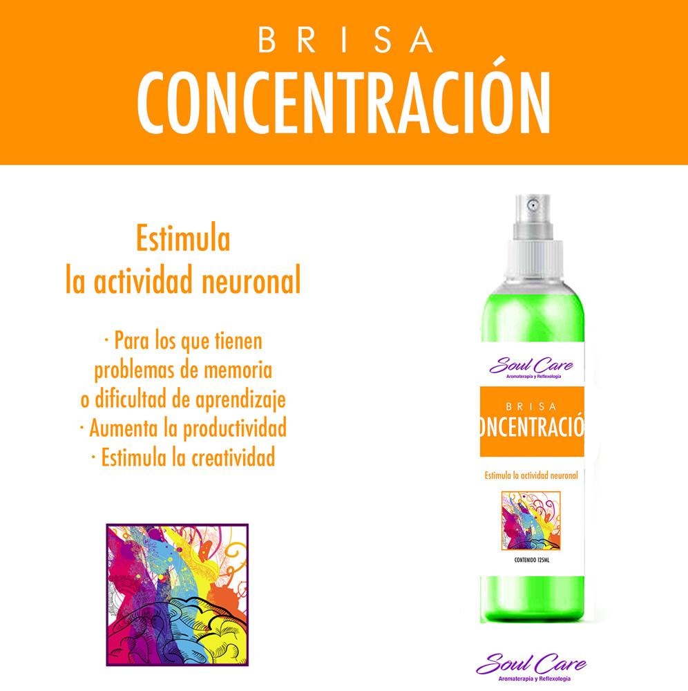 Brisa Concentracion