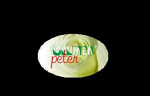 BlumenPeterNEU.png