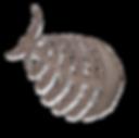 poisson-ballon-01-big.png