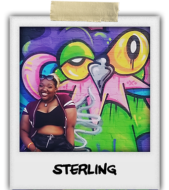 Sterling ARMF 2019 particpant Profile pi