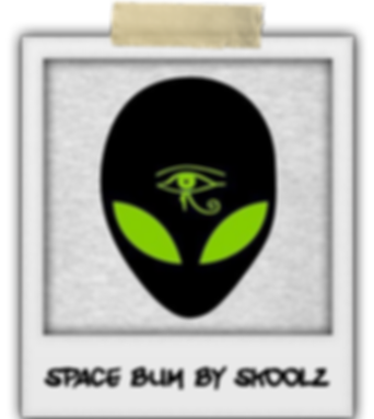 Space Bum by Skoolz Profile pic .png