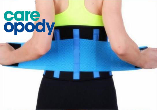 Careopody Lower Back/Lumbar Support
