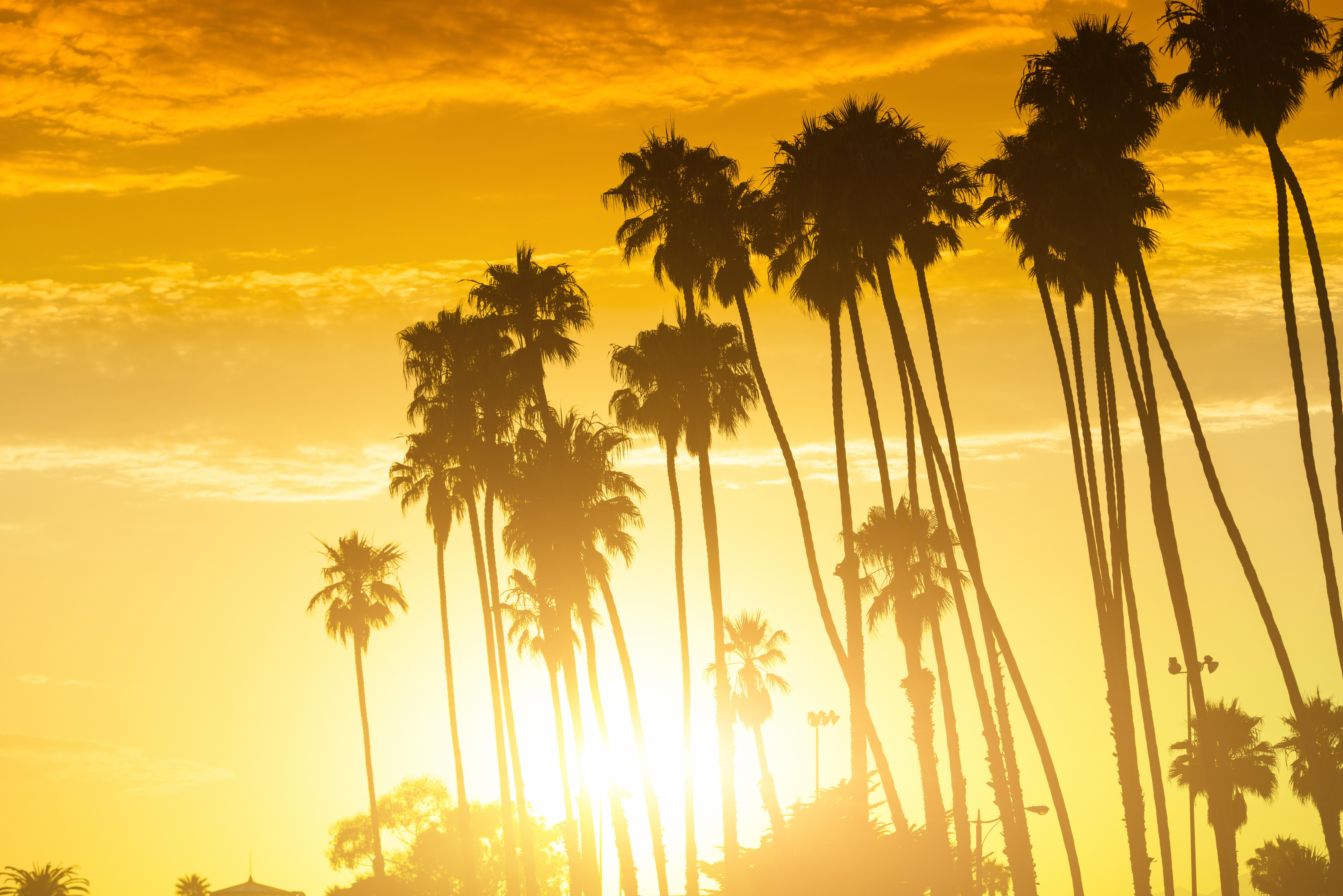 Studio710_San_Diego_Downtown_Daylight_Photo_Studio_Event_Rental_09