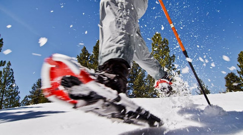 Ford Explorer - Snow Adventure