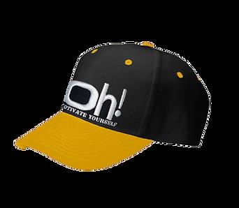 HATS - TWO TONE FLEX FIT BASBALL CAPS at www.OhHats.com