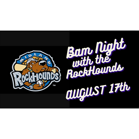 BAM Night at the RockHounds