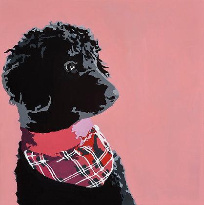 Black Standard Poodle Digital Download (Pack of 4)