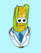 Doctor Corn