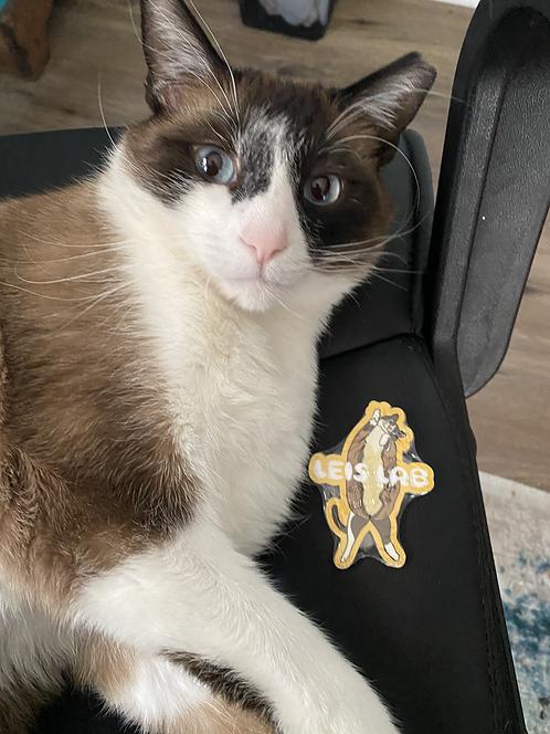 Potato Cat Sticker